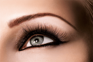 Online Brow Perfection Training Package